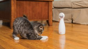 PetSafe Bolt Laser Cat Toy